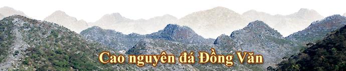 v_banner_caonguyendongvan