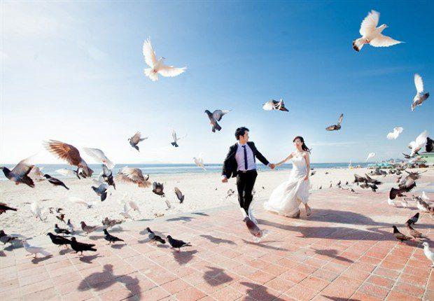 Công viên Biển Đông không chỉ là nơi chụp ảnh ấn tượng của các bạn trẻ mà đây cũng là điểm chụp ảnh cưới tuyệt vời của không ít cặp đôi.