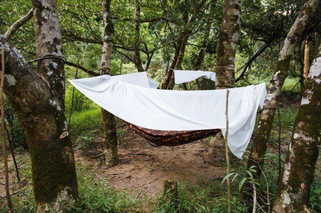 Đầu tiên các bạn phải chinh phục cánh rừng nguyên sinh ở thung lũng Tú Làn để lạc bước vào hang Tiên