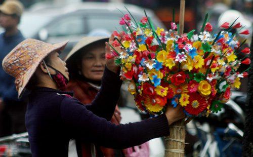hoa giay lang thanh tien