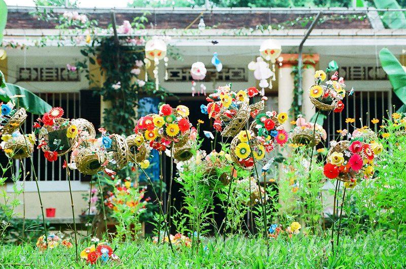 hoa giay thanh tien hue