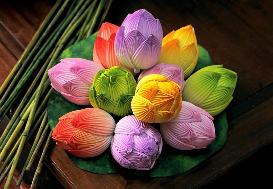 hoa giay thanh tien ne
