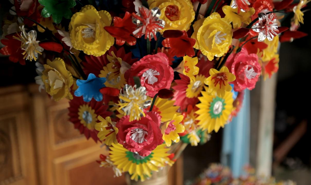 hoa giay12
