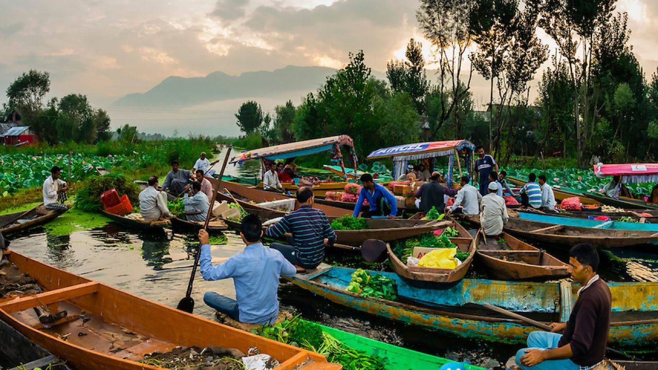 người bán hàng trên thuyền trên sông, bèo trên sông, cây xanh trên bờ