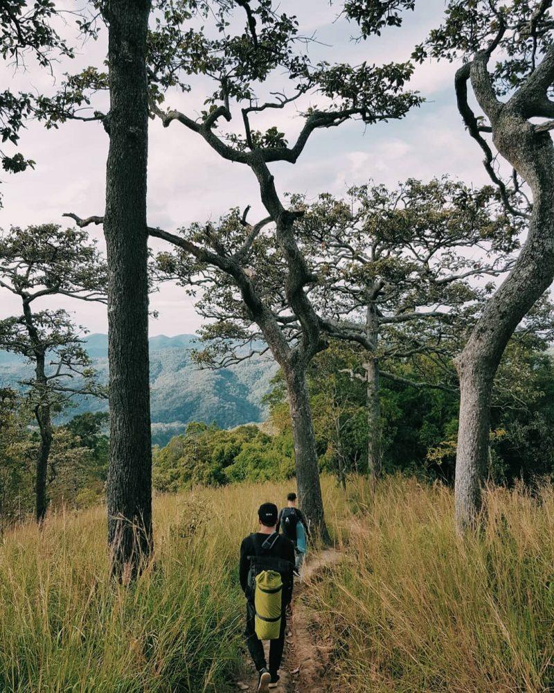 top nhung cung duong trekking dep o viet nam khamphadisan 1 e1529889884210