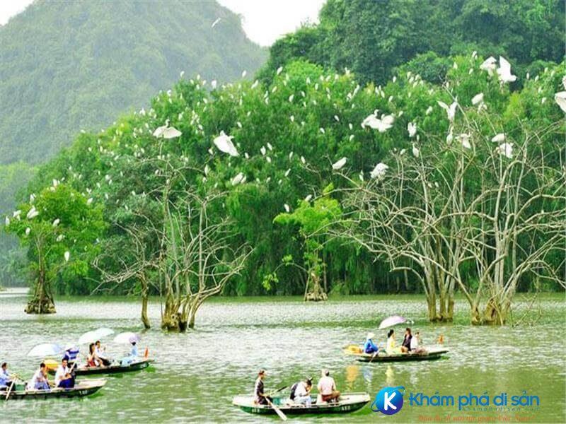 Đầm Thị Nại Bình Định - Khu Sinh Thái Cồn Chim