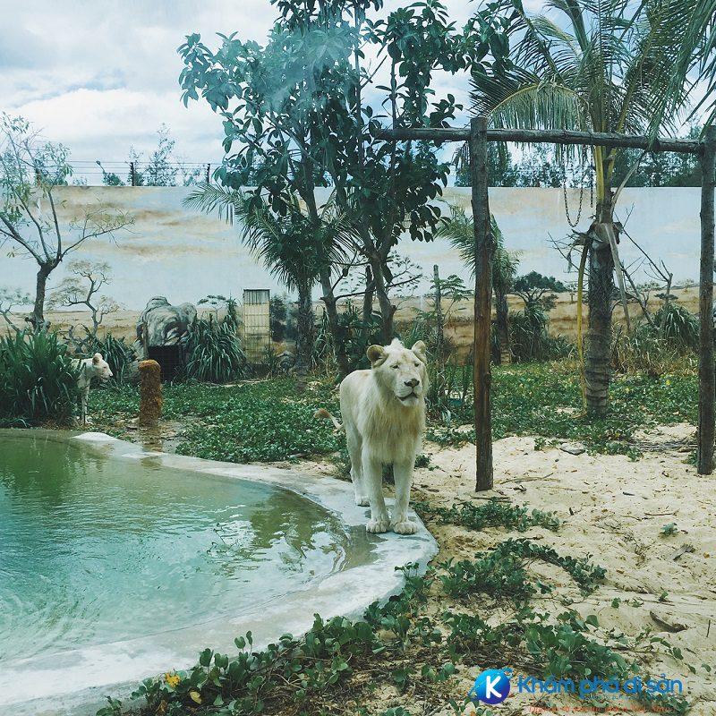 flc zoo safari park 3