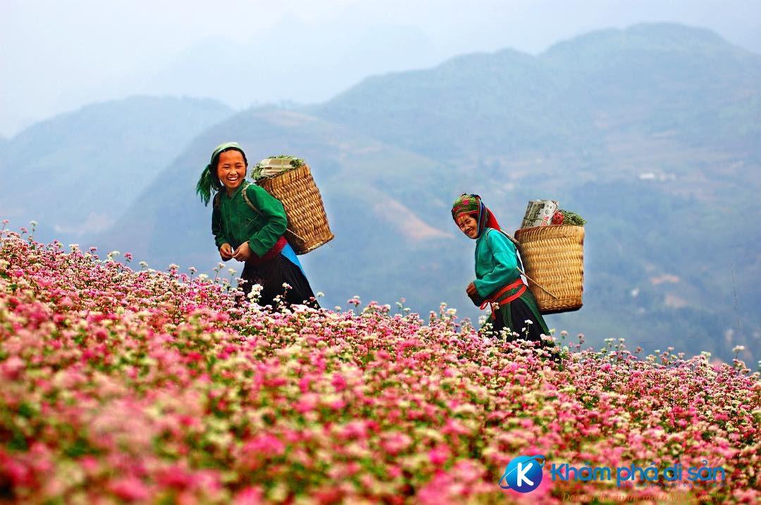 le hoi hoa tam giac mach ha giang khamphadisan 4