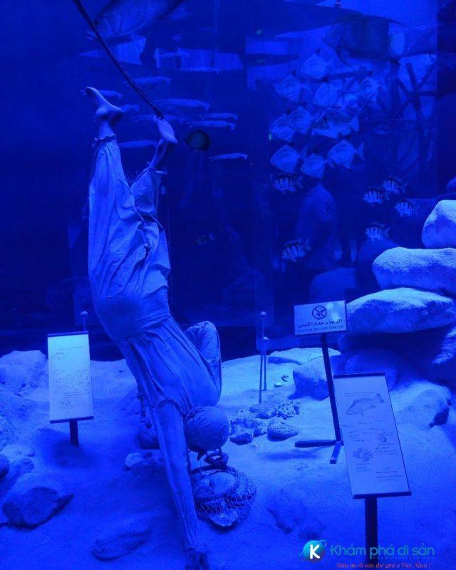 Ngư dân mò ngọc trai dưới biển sâu