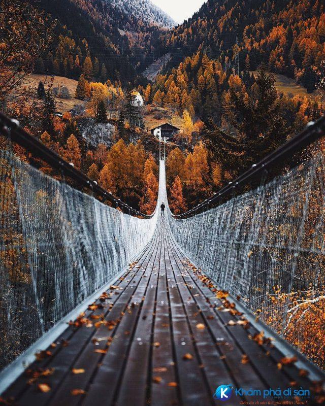 Cầu Capilano