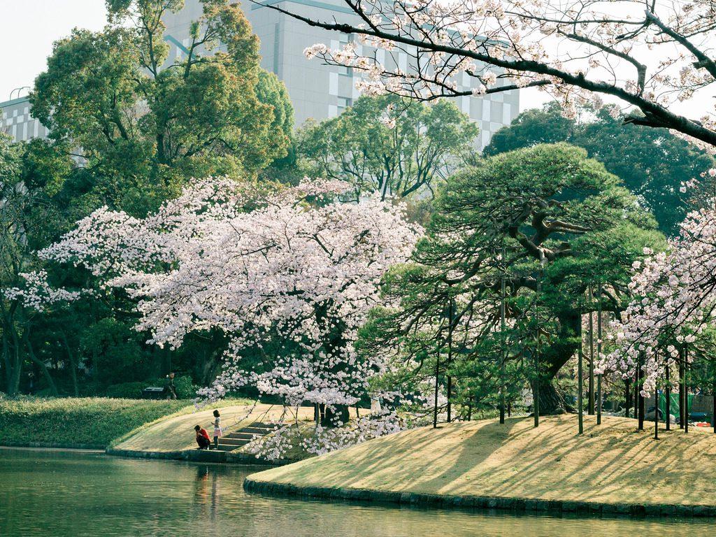 Lễ hội hoa Mận Sankeien