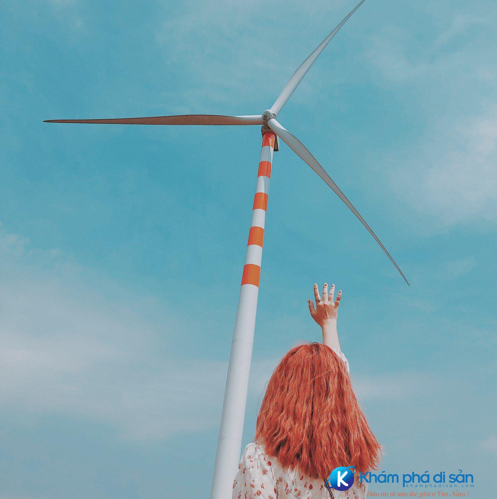 cánh đồng quạt gió đak lak
